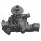 D4009278 NEW Water Pump For Agco-Allis 6060 6070 6080